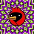 Omsk Crow