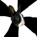 Roleplaying Rabbit